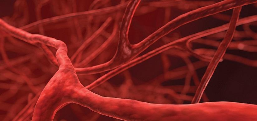 Creare vasi sanguigni con la biostampa 3D