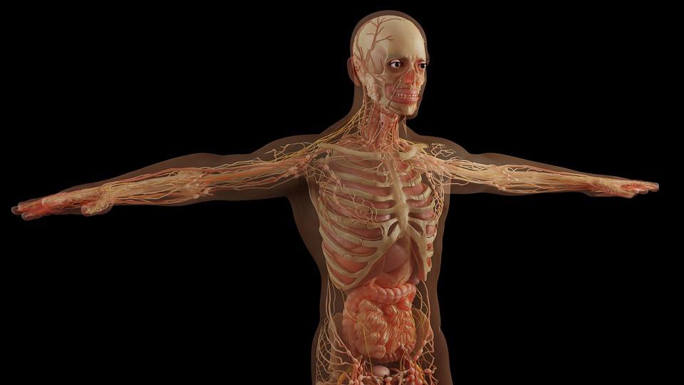 Progetto DINAMICA: biomateriali nanostrutturati per il trattamento e la rigenerazione del tessuto Osseo metastatico